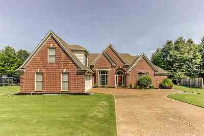 Bartlett Single Family Home For Sale: 7894 Briarwind