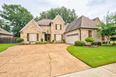 Collierville Single Family Home For Sale: 1348 Raindrop