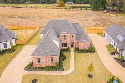 Collierville Single Family Home For Sale: 613 Cypress Green