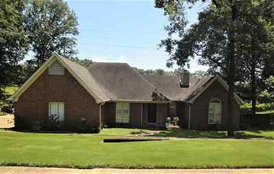 Memphis Single Family Home For Sale: 142 S Walnut Bend