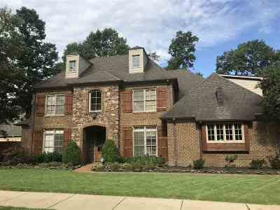 Collierville Single Family Home Contingent: 173 Ivy Brook