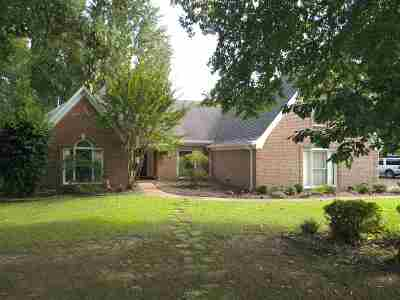 Collierville Single Family Home For Sale: 9125 Forest Wind