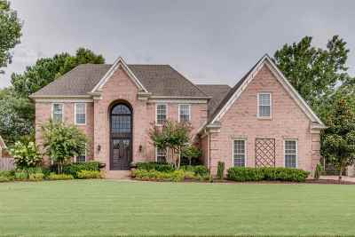 Collierville Single Family Home Contingent: 1286 Creek Valley