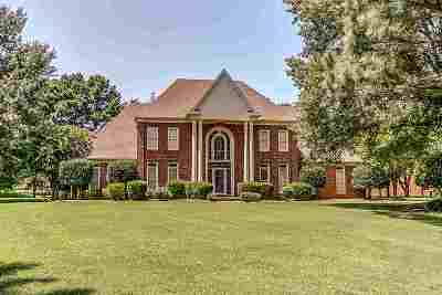 Collierville Single Family Home For Sale: 2641 N Mansfield Manor