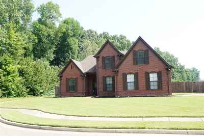 Bartlett Single Family Home For Sale: 6000 Abigail Bluffs