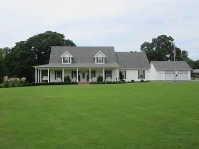 Savannah TN Single Family Home For Sale: $288,000