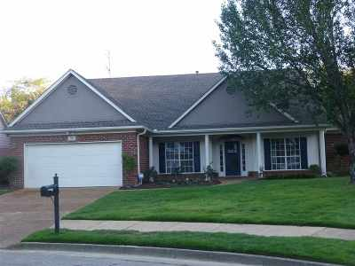 Collierville Single Family Home Contingent: 95 Berryfield