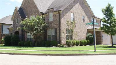 Collierville Single Family Home Contingent: 187 Red Sea