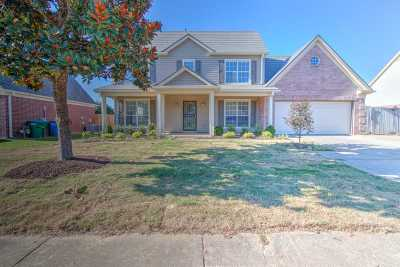 Arlington Single Family Home For Sale: 11236 Ewe Turn