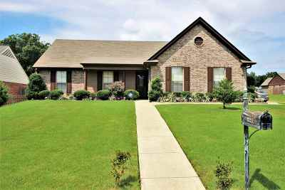 Southaven Single Family Home For Sale: 8213 Park Pike