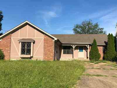 Millington Single Family Home For Sale: 4228 Water Briar