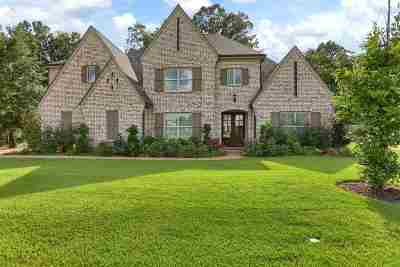 Collierville Single Family Home For Sale: 4495 Chestnut Hill