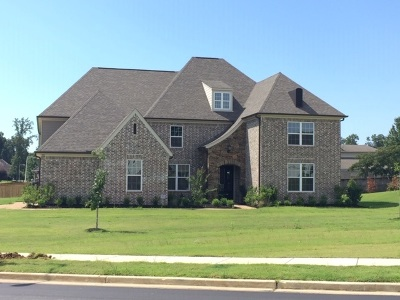 Collierville Single Family Home For Sale: 991 Tender Oaks