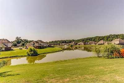 Bartlett Single Family Home For Sale: 6117 Lamb Woods