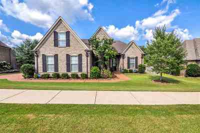 Lakeland Single Family Home For Sale: 10252 Herons Pointe