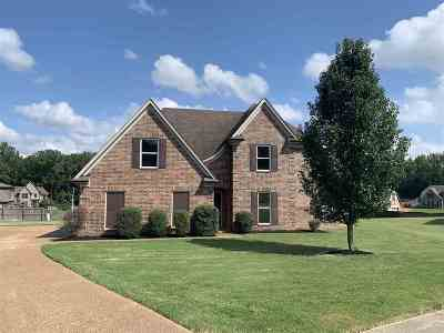 Shelby County Single Family Home For Sale: 4320 S Maher
