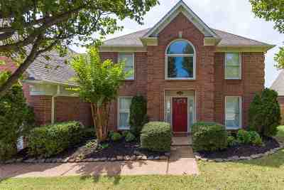 Collierville Single Family Home Contingent: 481 Canter Gait