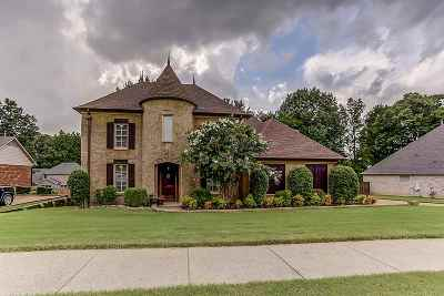 Shelby County Single Family Home For Sale: 4819 Ross Hollow