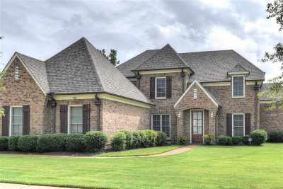 Collierville Single Family Home Contingent: 800 Six Oaks