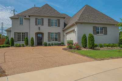 Collierville Single Family Home For Sale: 424 Kayley