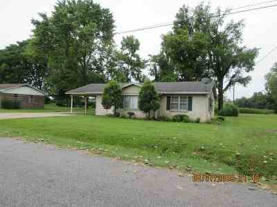 Ripley Single Family Home For Sale: 357 Springfield