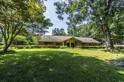 Germantown Single Family Home For Sale: 9379 Green Knoll