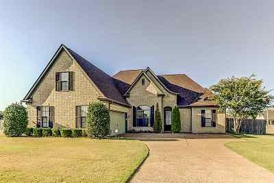 Arlington Single Family Home Contingent: 12454 Darton