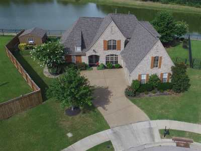 Arlington Single Family Home Contingent: 11095 Goat Valley