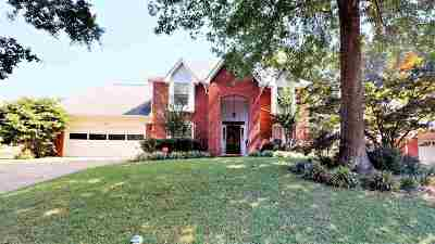 Memphis Single Family Home For Sale: 284 Summerfield