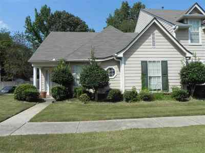 Collierville Single Family Home Contingent: 139 Dannon Springs