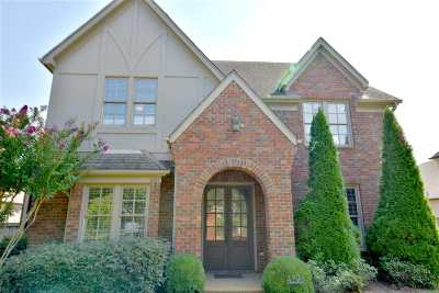Memphis Single Family Home For Sale: 6767 Messick