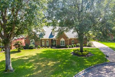 Collierville Single Family Home Contingent: 2620 Gwynn Manor