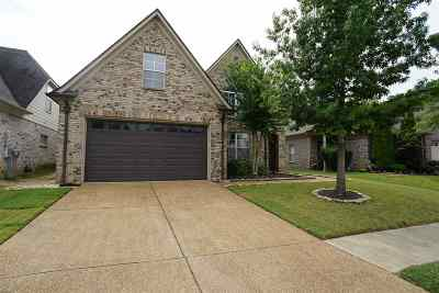 Memphis Single Family Home For Sale: 369 Fleets Hill