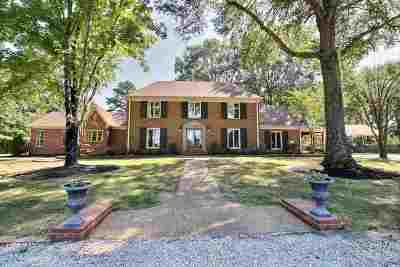 Collierville Single Family Home For Sale: 4920 Fleming
