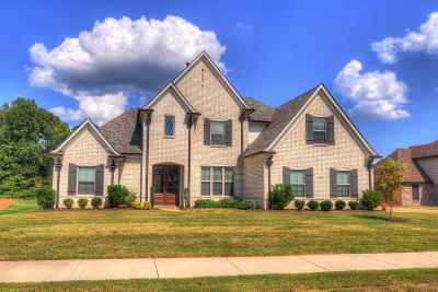 Bartlett Single Family Home For Sale: 8646 Branson