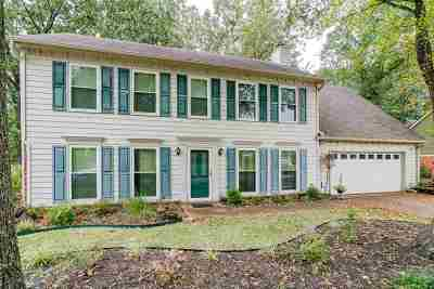 Memphis Single Family Home For Sale: 285 Summerfield