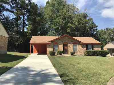Memphis Single Family Home For Sale: 3416 Spring Water