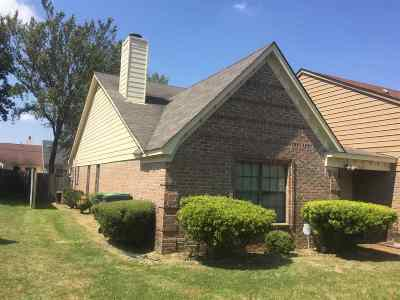 Memphis Single Family Home For Sale: 4205 Meadow Ridge