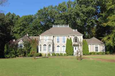 Memphis Single Family Home For Sale: 319 N Walnut Bend