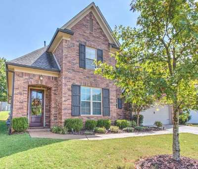 Collierville Single Family Home For Sale: 1286 Raindrop