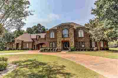 Collierville Single Family Home For Sale: 9915 Garden Trail
