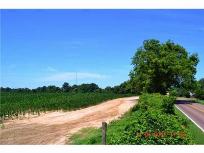 Residential Lots & Land For Sale: 8969 N Tracy Road