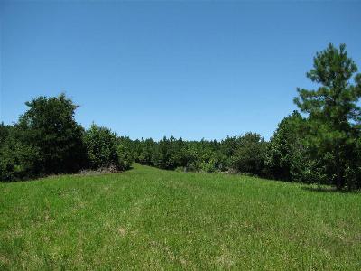 Waynesboro Single Family Home For Sale: 2220 Indian Creek