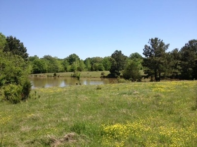 Rossville Residential Lots & Land For Sale: 2340 Raleigh Lagrange