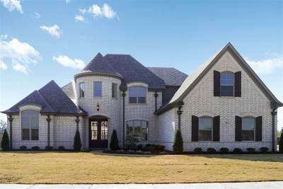Olive Branch Single Family Home For Sale: 6632 Timber Oaks