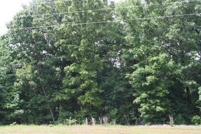 Southaven Residential Lots & Land For Sale: 1100 Church Road
