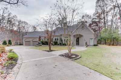 Bartlett Single Family Home For Sale: 9015 Anderton Springs