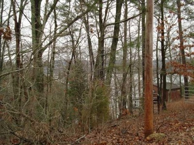 Pickwick Lake AL Residential Lots & Land For Sale: $24,900