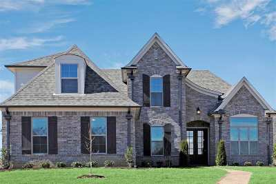 Olive Branch Single Family Home For Sale: 5194 Stonecrest