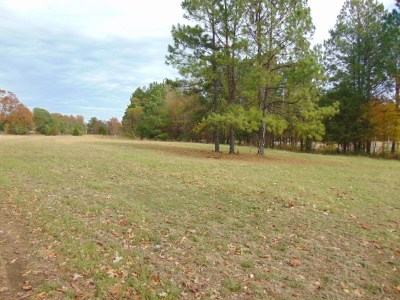 Collierville Residential Lots & Land For Sale: 2961 S Houston Levee